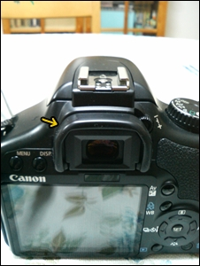 20090121p1.jpg