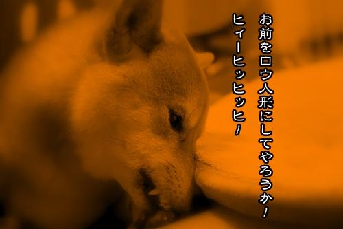 200903134.jpg