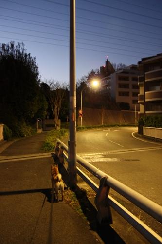 200903164.jpg