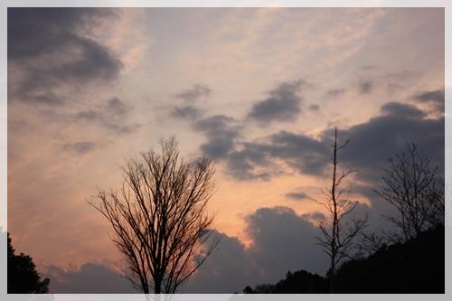 200903284.jpg