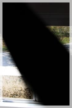 200905081_4.jpg