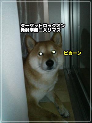 200905153.jpg