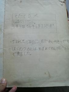 200905275.jpg