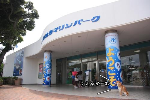 200906131.jpg