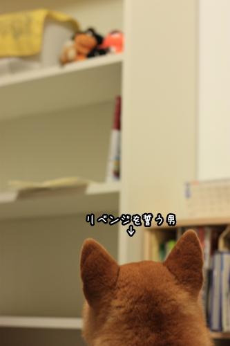 200906187.jpg