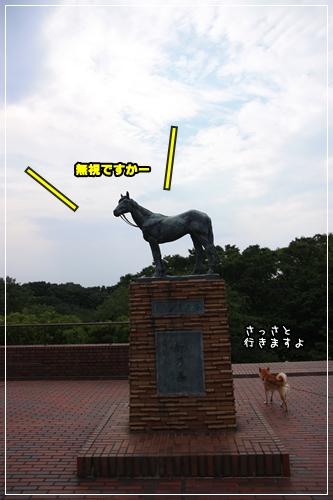 200907184.jpg