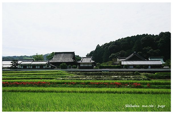 20092310.jpg