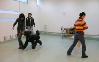 dogdance-1.jpg