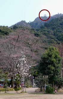 kinkazan-327-fumoto.jpg