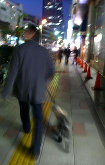 lights-kenbutu.jpg