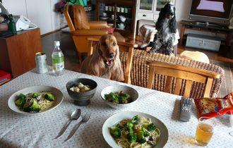 pasta-lunch.jpg