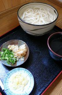sanuki-udon.jpg