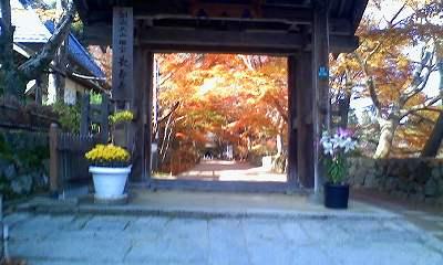 長寿寺紅葉