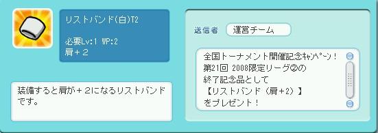 2009y01m25d_220221452.jpg