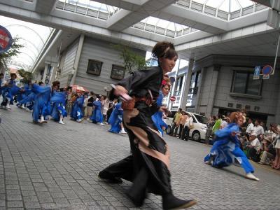 2008koutiyosakoi4