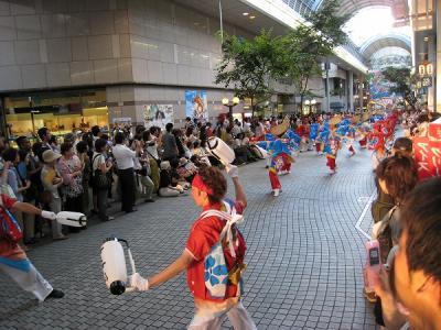 2008koutiyosakoi12