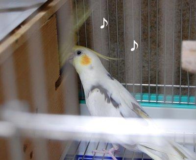 200916-1n.jpg