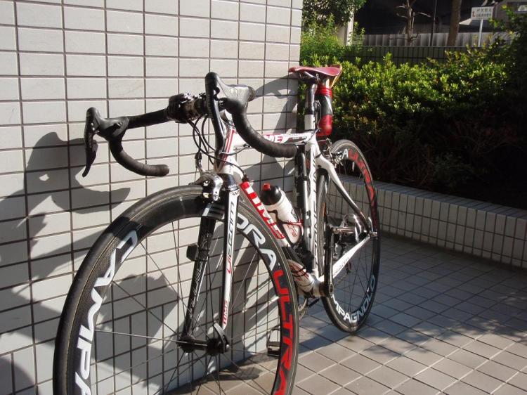 P5020039.jpg
