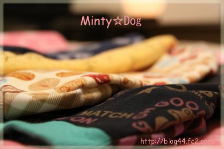 MintyDog1