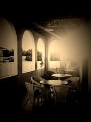 SHEVLON.jpg