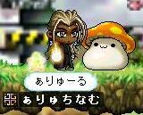 kinoko5.jpg