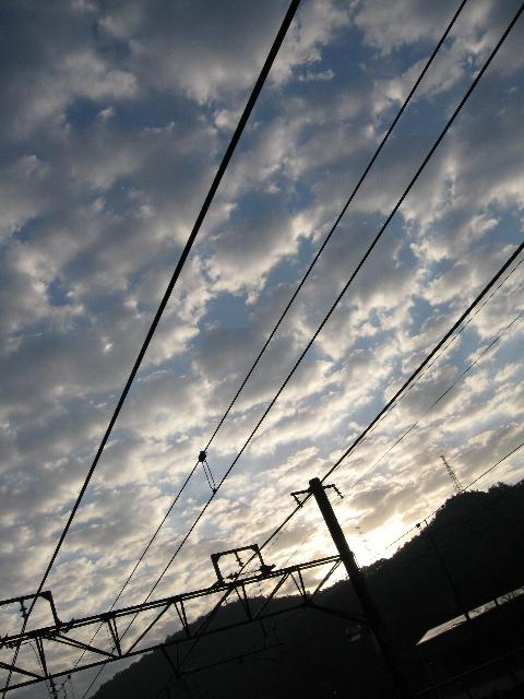 20061116_002.jpg