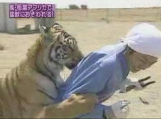 『世界のトンデモ動物と命がけで修行