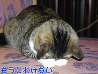 20061105_42723.jpg
