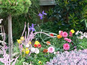 flower_20080923221048.jpg
