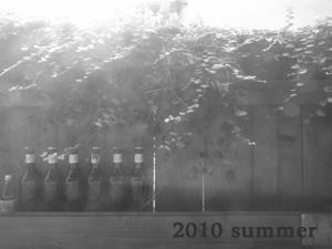 2010summer