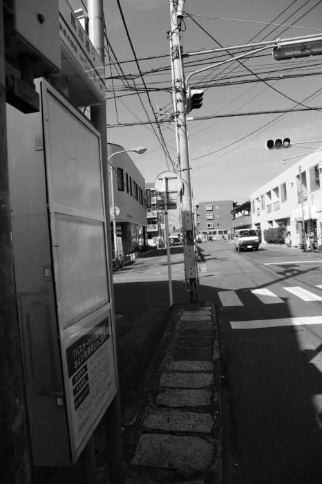 FC2_2.jpg
