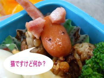 2008_09_26_2.jpg