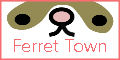 FerretTown.jpg