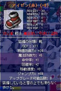 Maple01221.jpg
