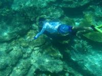 パナリ海中