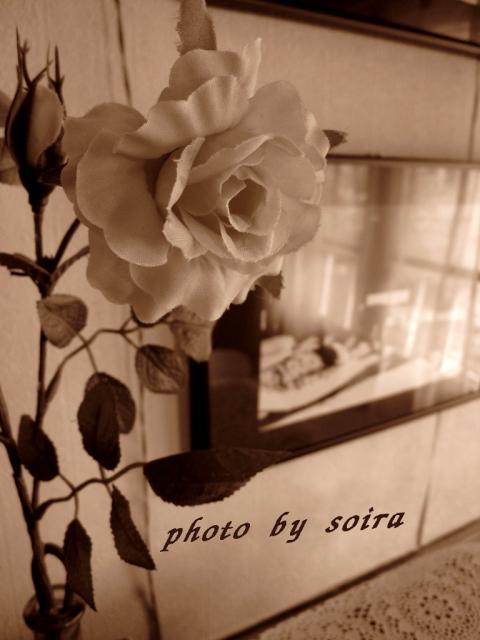 この薔薇、実は造花です^^