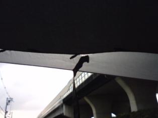 日傘です。