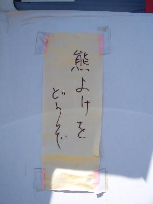 nikko36.jpg