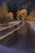 rain2_1.jpg