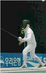 fencing01.jpg
