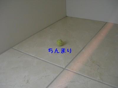 s-DSCN5721.jpg