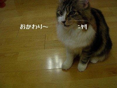 s-DSCN5795.jpg