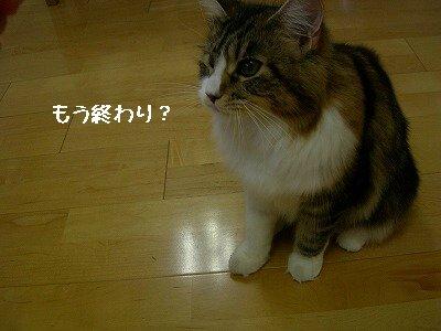 s-DSCN5796.jpg