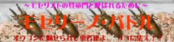 MB42_20090524162540.jpg
