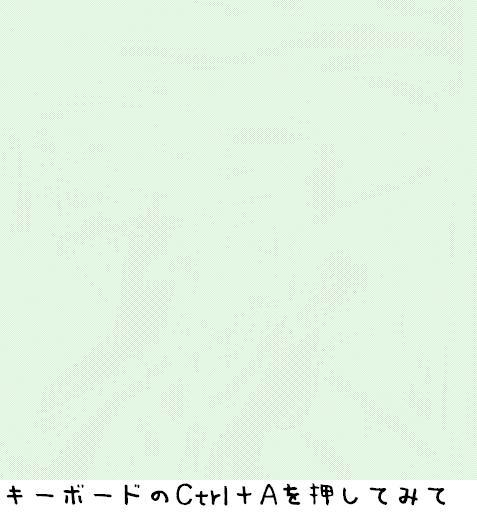 20060304204000.jpg