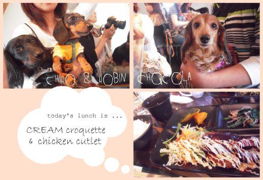 Picnik chicken cutlet