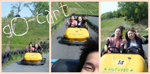 go-cart.jpg