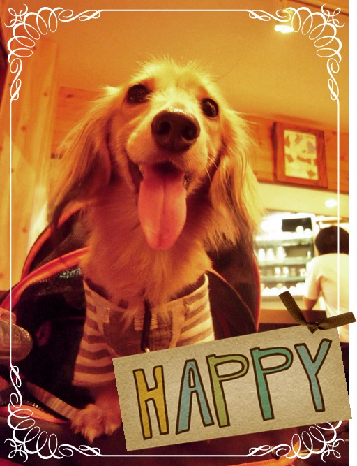 happy_20090911221859.jpg