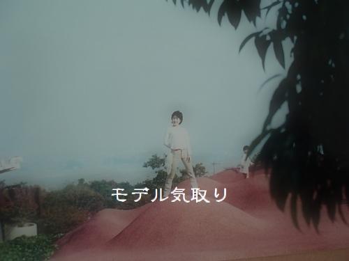 hinomarunosu2009081910.jpg