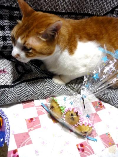 マルオ君とお菓子